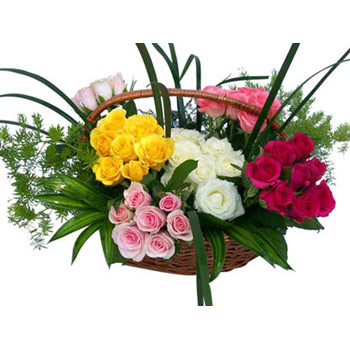 50Red+yellow+white+pink Roses Basket