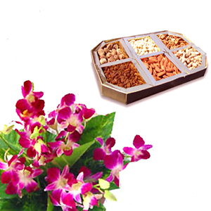 1/2 kg Dryfruits and 6 orchids