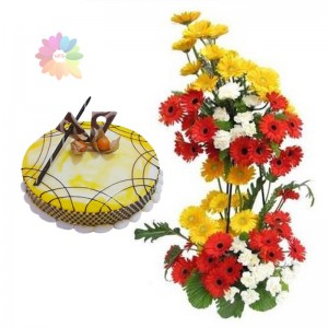 Gerberas on Stand+1/2 kg Cake