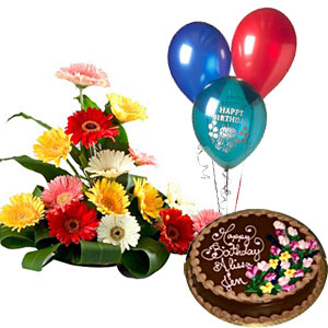 3 Balloons+ 1/2 Kg Chocolate Cake + 12 Mix Gerberas Basket
