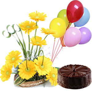 6 Balloons+ 1/2 Kg Chocolate Cake + 12 Yellow Gerberas Basket