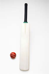 Cricket Bat and Balls
