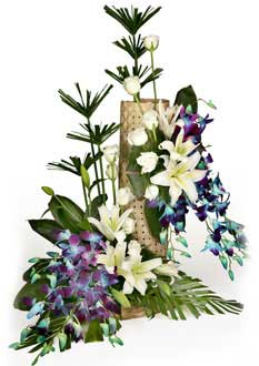 Basket of White and Blue Orchids
