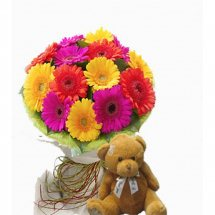 Teddy with 12 coulored gerberas
