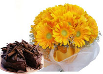 12 Yellow Gerberas Bunch+ 1/2 Kg Cake