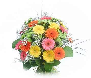 18 Gerberas Arrangement