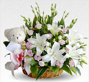 Teddy and White Flowers basket